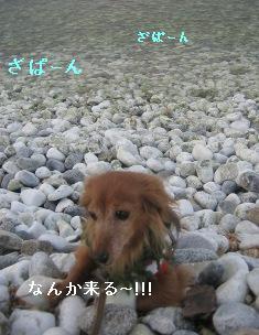 IMG_7662blog.jpg