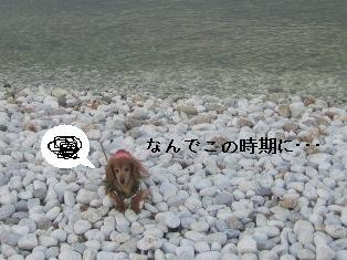IMG_7663blog.jpg
