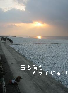IMG_7673blog.jpg
