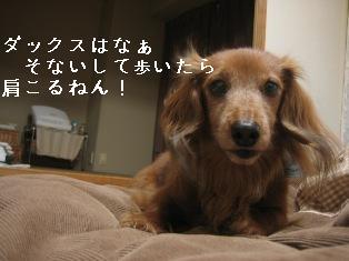 IMG_7706blog.jpg