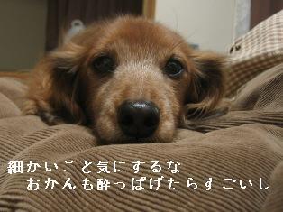 IMG_7707blog.jpg