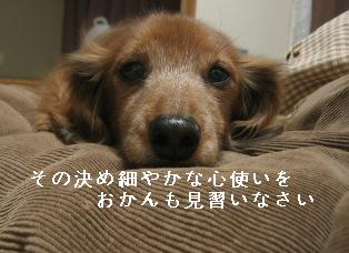 IMG_7708blog.jpg