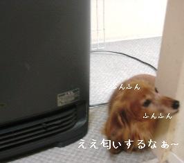 IMG_7709blog.jpg