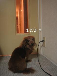 IMG_7776blog.jpg