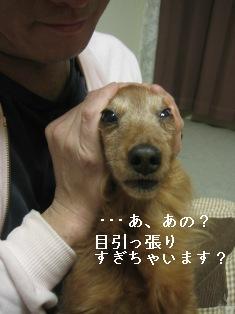 IMG_7785blog.jpg