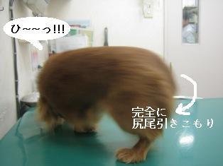 IMG_7792blog.jpg