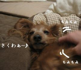 IMG_7972blog.jpg