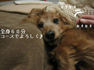 IMG_7976blog.jpg