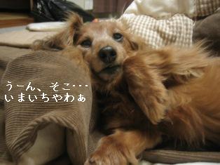 IMG_7981blog.jpg