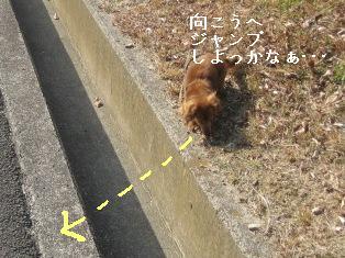 IMG_8002blog.jpg