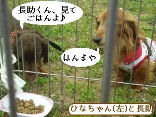 P1000323blog.jpg