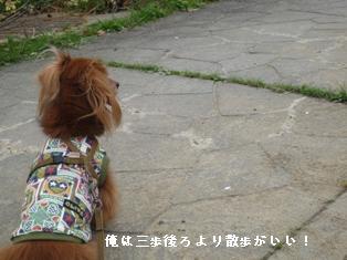 P1000439blog.jpg