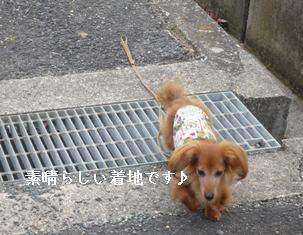 P1000676blog.jpg