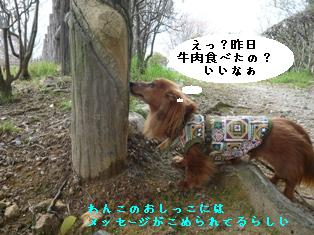 P1000681blog.jpg