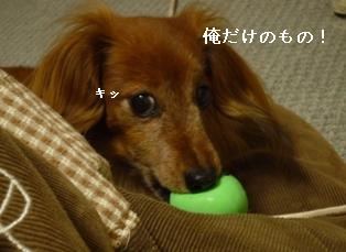 P1000731blog.jpg