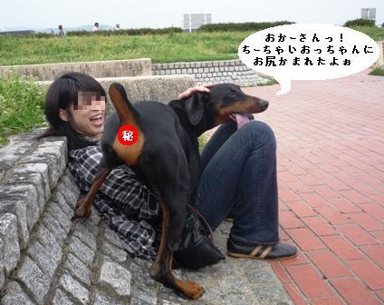 P1000831blog.jpg