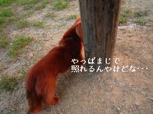 P1010156blog1.jpg