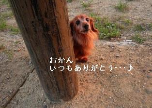 P1010157blog1.jpg