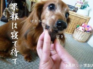 P1010168blog.jpg