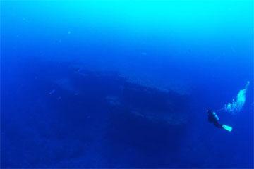 ダイバー(与那国島)