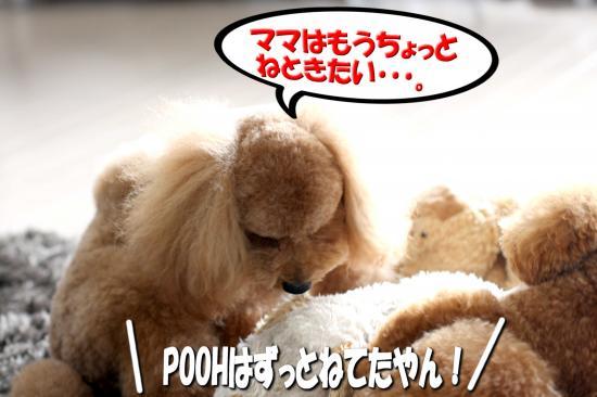 10_20080910160752.jpg