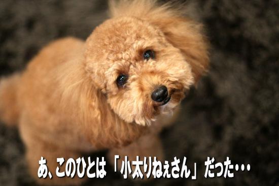11_20080823012216.jpg