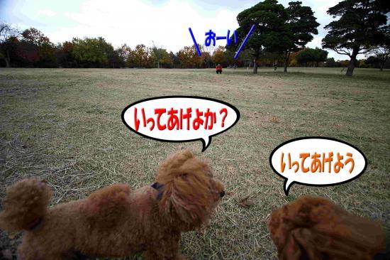 12_20081206153111.jpg