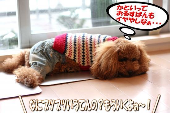 13_20081027011012.jpg