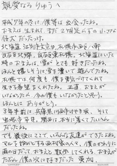 14_20081006012127.jpg