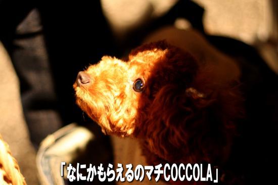 15_20080922160554.jpg