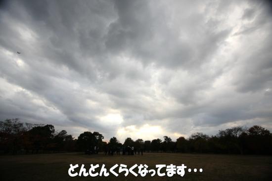 1_20081207231917.jpg