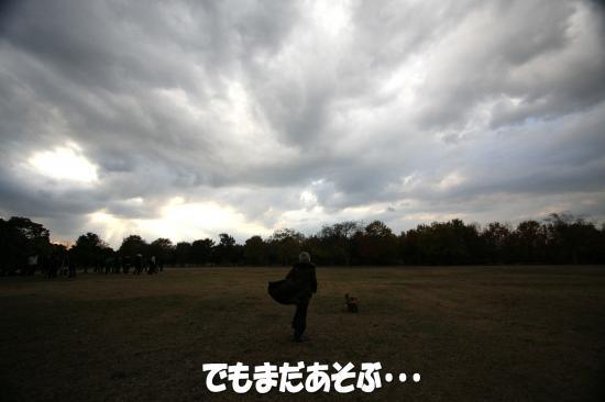 2_20081207232006.jpg