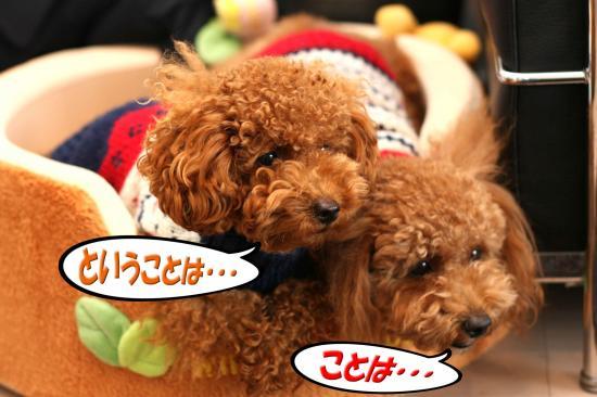 3_20081027010834.jpg
