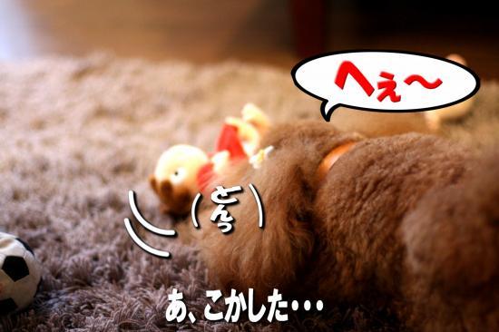 4_20080925203100.jpg