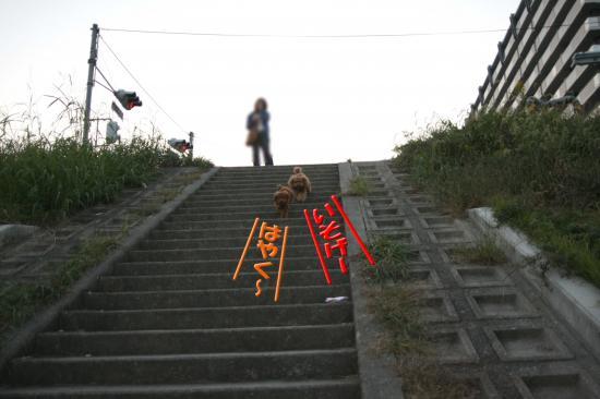 4_20081020194751.jpg