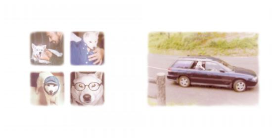 5_20081006011922.jpg