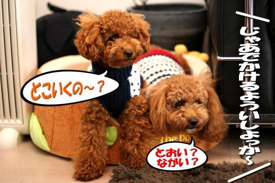 7_20081027010913.jpg