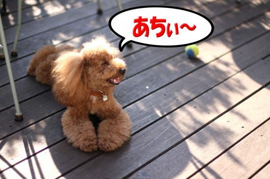 9_20080913193222.jpg
