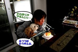9_20081003151137.jpg