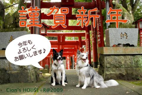 09_nenga_pht.jpg