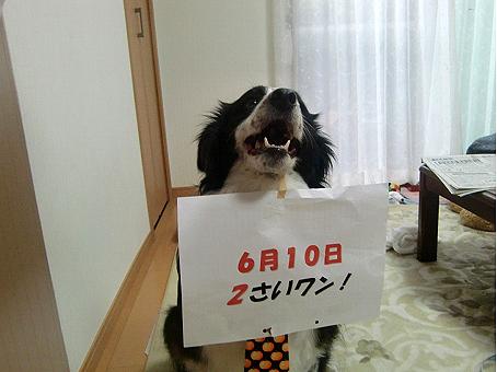 nagi090610.jpg
