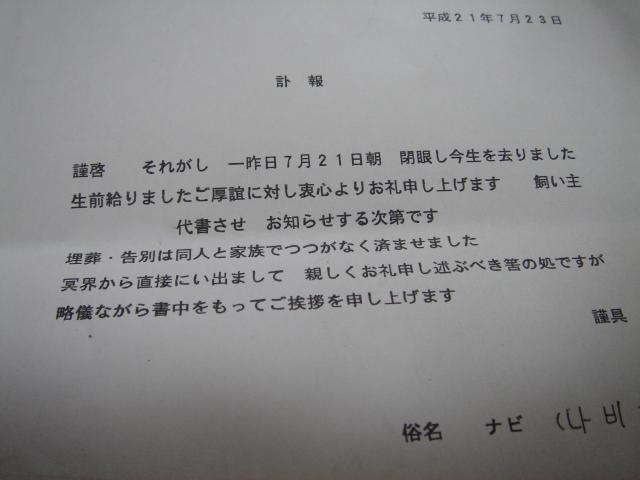 DSC07537_convert_20090723120716.jpg