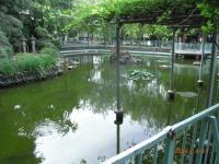 川崎大師 鶴の池 浄化槽清掃