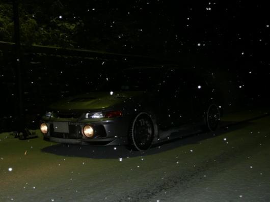 1月11日積雪(22)