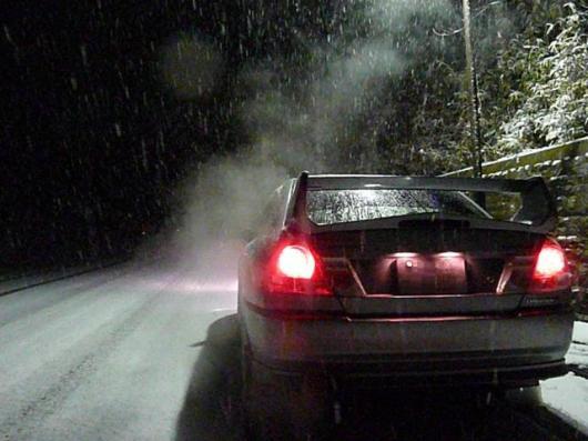 1月11日積雪(28)