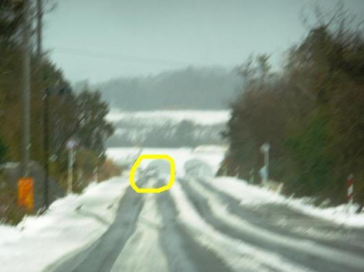 1月11日積雪(37)