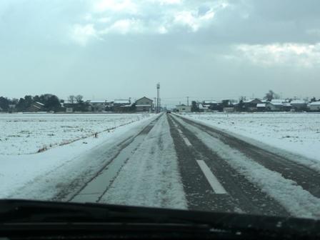 1月16日 積雪(3)