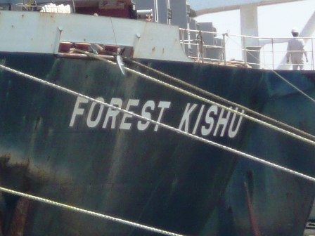 FOREST KISHU
