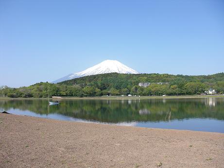 つり(山中湖)1