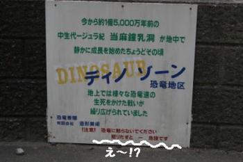 IMG_2007_ks1